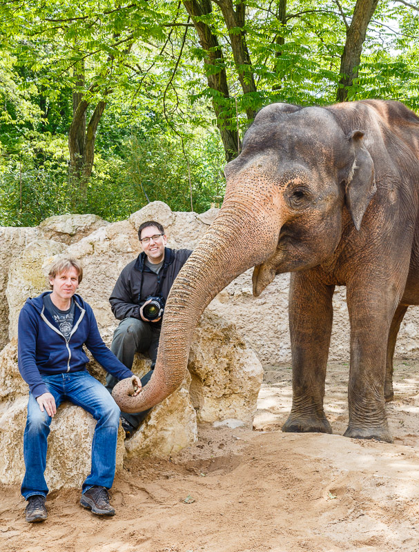 Shooting mit Elefant